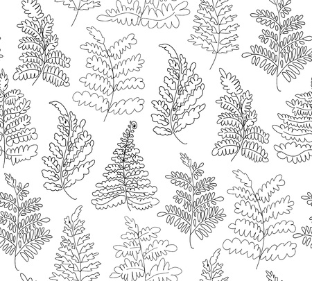 Floral vector ferns pattern. Hand drawn botanical texture. Decorative linear background