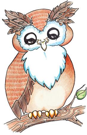 fly cartoon: Cartoon animal owl on tree branch isolated.
