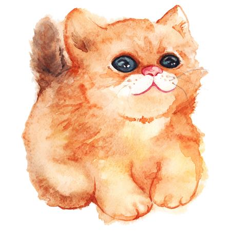 fluffy: Watercolor cute cartoon fluffy ginger cat