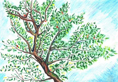 noon: Watercolor tree leaf branch on sky background.