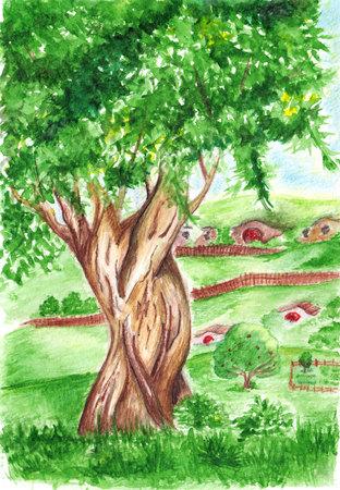 shire: Watercolor big green tree in village landscape.