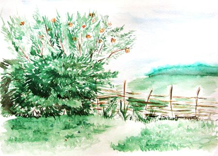 hamlet: Watercolor countryside field wood forest nature landscape.