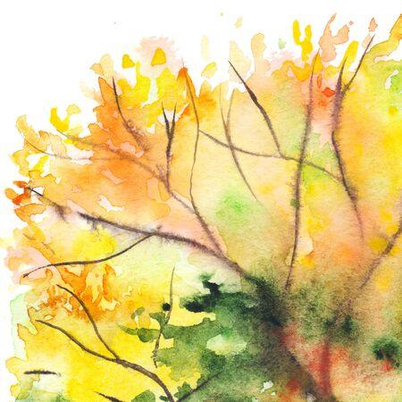 midday: Watercolor autumn yellow orange green tree foliage background.