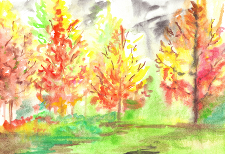 red yellow: Watercolor red yellow autumn forest wood landscape.