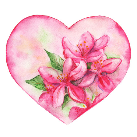 romantic: Pink floral lily romantic love heart isolated.