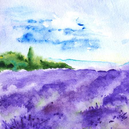 provence: Watercolor lavender fields nature France Provence landscape.