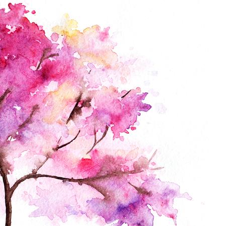 Watercolor single pink cherry sakura tree isolated.
