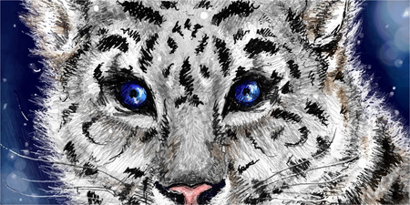 navy blue background: Little cute sketched snow leopard on navy blue background.