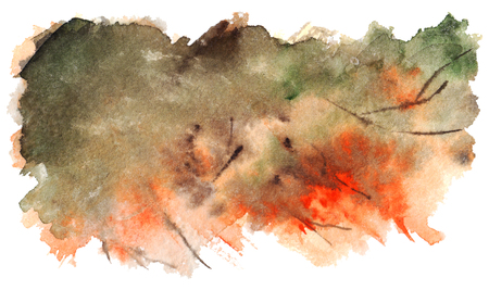 spot clean: Watercolor autumn foliage tree nature background texture.