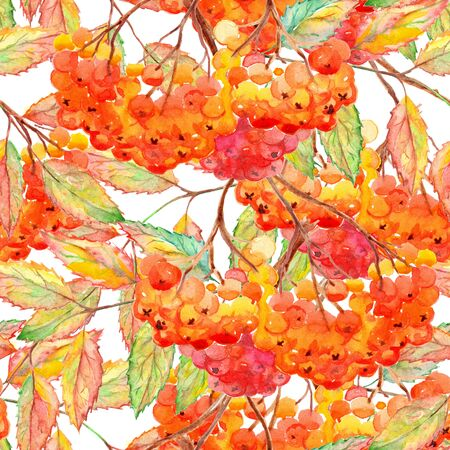 artwork: Watercolor rowan ashberry leaf branch seamless pattern. Stock Photo