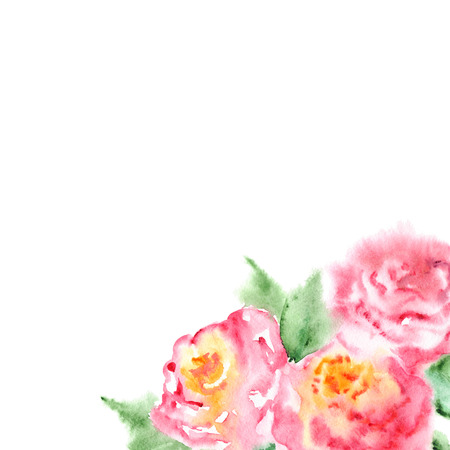 natural background: Watercolor pink tea rose flower floral composition frame. Stock Photo