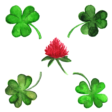 Watercolor vector clover shamrock flower set isolated.