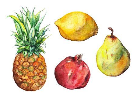 exotic fruit: Watercolor oineapple pomegranate lemon pear fruit set isolated.