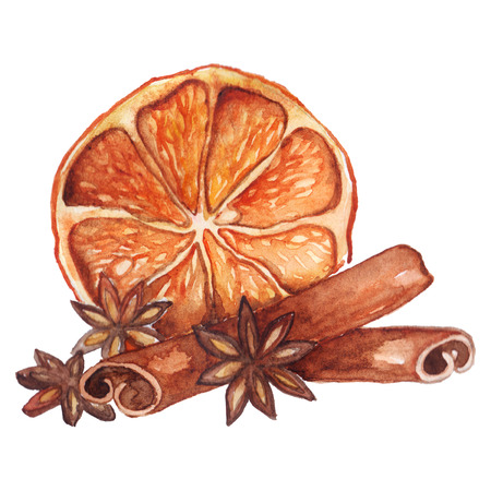 anise: Watercolor lemon citrus anise cinnamon fruit still life isolated.