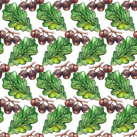 acorn seed: Watercolor oak green leaf acorn seed seamless pattern background texture.