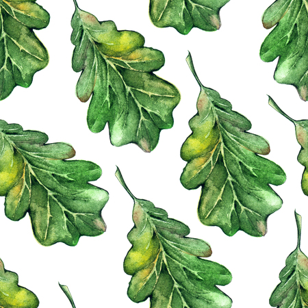acorn seed: Watercolor three oak green leaf acorn seed seamless pattern background. Stock Photo