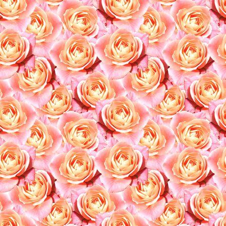 tea rose: Pink tea rose flower floral seamless pattern texture. Stock Photo
