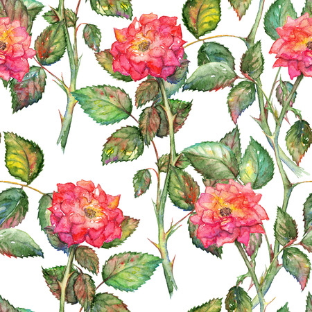 watercolor texture: Watercolor pink roses seamless pattern texture background.