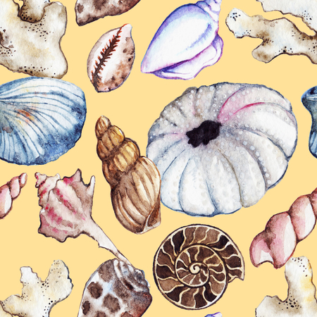 clam: Watercolor sea ocean seashell clam coral ammonit urchin seamless pattern. Stock Photo
