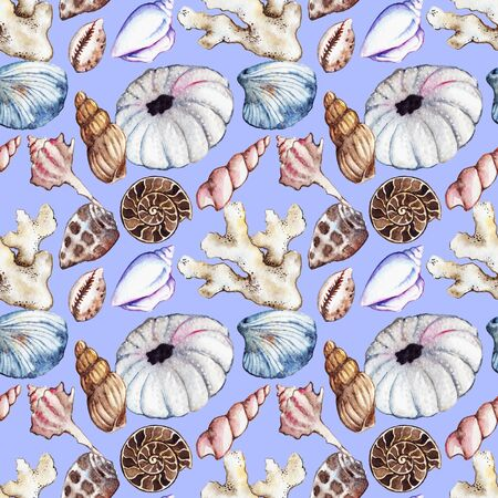 polyp corals: Watercolor sea ocean seashell clam coral ammonit urchin seamless pattern. Stock Photo