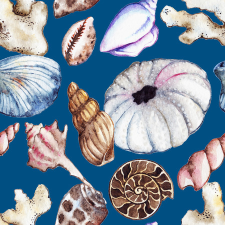 urchin: Watercolor sea ocean seashell clam coral ammonit urchin seamless pattern. Stock Photo