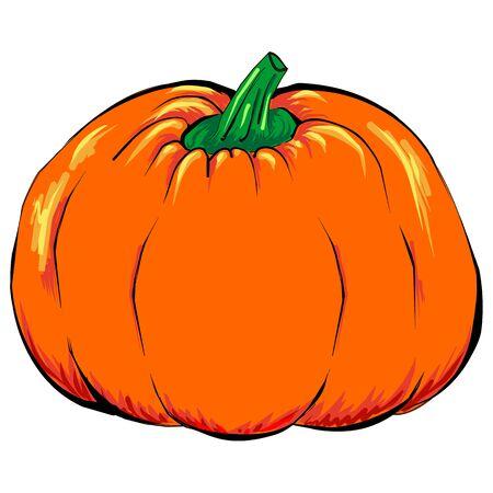 green lantern: Halloween Jack-o-lantern orange pumpkin vegetable isolated vector.