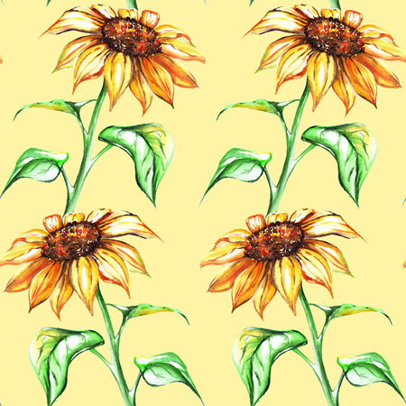 Watercolor yellow sunflower flower seamless pattern texture background. Stock Photo