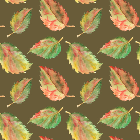 yellow red: Autumn green yellow red leaves seamless pattern texture background.