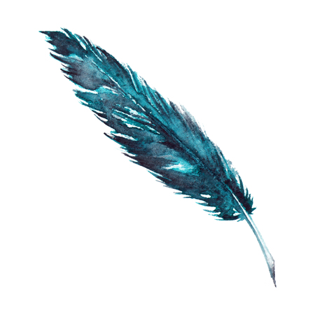 Watercolor single navy blue turquoise bird feather isolated.