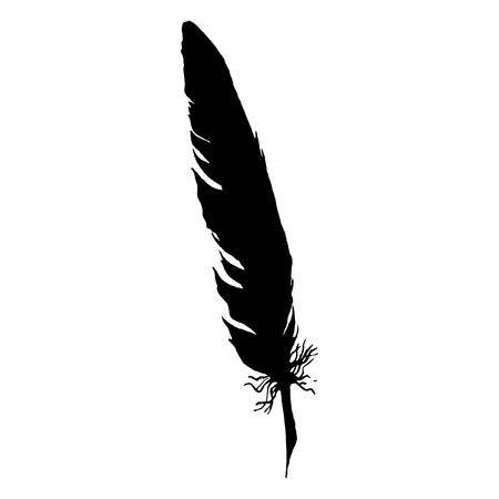 Silhouette black and white monochrome feather isolated vector.