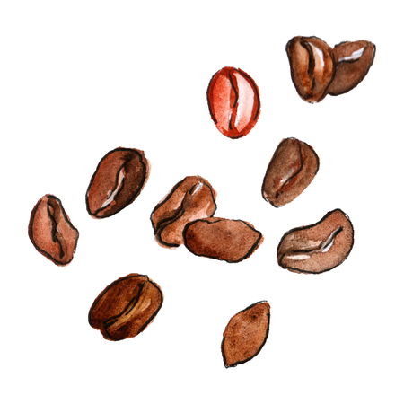 Watercolor natural aroma coffee beans arabica isolated.