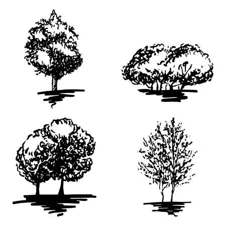 tree: Monochrome tree silhouette sketched line art set isolated vector.
