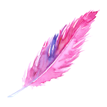 animal silhouette: Watercolor pink purple crimson violet bird rustic feather isolated. Stock Photo