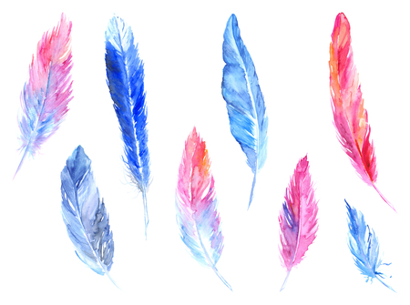 quills: Watercolor colorful bird feather rustic isolated set.