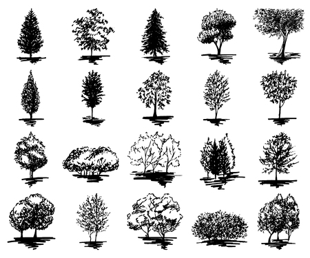Monochrome tree silhouette sketched line art set isolated vector.