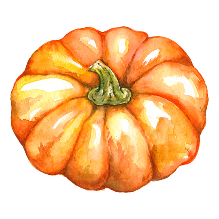 Watercolor orange pumpkin vegetable Jack-o-lantern Halloween isolated.
