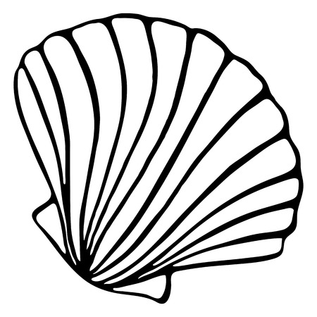 Monochrome black and white sea shell seashell silhouette ink line art sketch isolated vector.