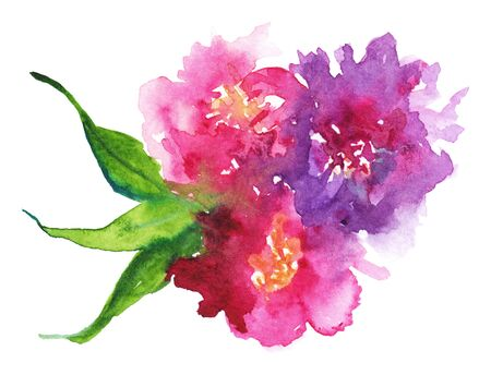 Watercolor pink purple flower floral peony rose carnation leaf boutonniere composition set isolated art illustration. Stock Photo