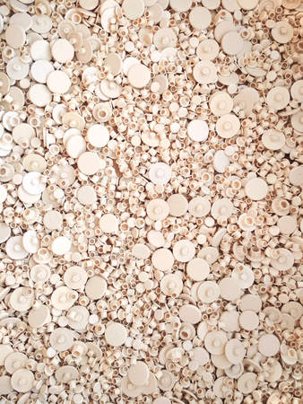 Plastic beige furniture rivet background texture macro photo.