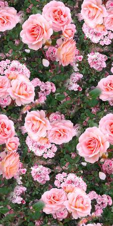 Pink rose flower garden grass summer nature seamless pattern texture background. Stok Fotoğraf - 124783238