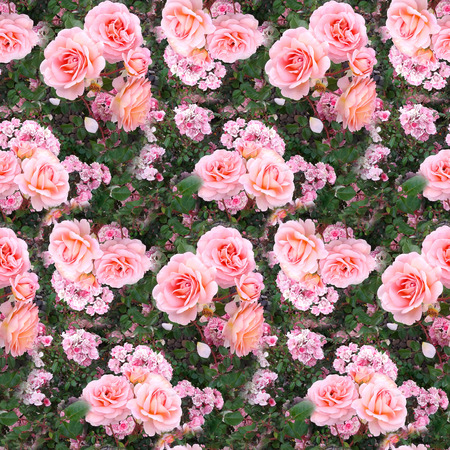 Pink rose flower garden grass summer nature seamless pattern texture background.