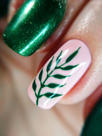 Woman finger pink nude nature green branch leaf manicure gel nail polish swatch design art beauty fashion macro photo. Stok Fotoğraf - 124765084
