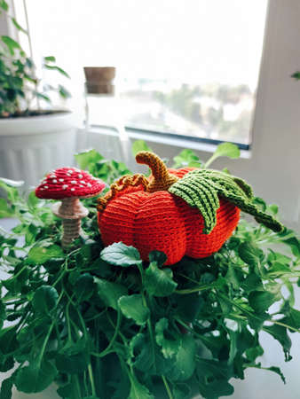 Pumpkin mushroom fly agaric amanita plant knitting crochet yarn thread hook craft creative closeup macro photo. Stock fotó