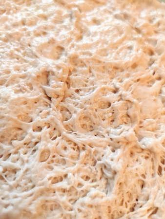Raw yeast dough baking cooking texture background macro photo.