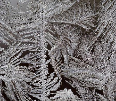iceflower: Close-up del gelo fiore