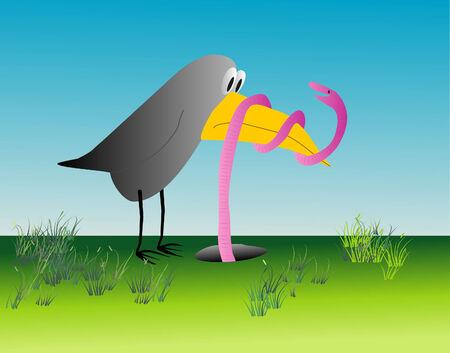 duel: Humorous illustration of the bird and rainwom - duel