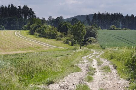 dirtroad: Shot of the country road