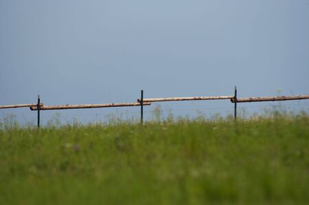 pales: fence of pales