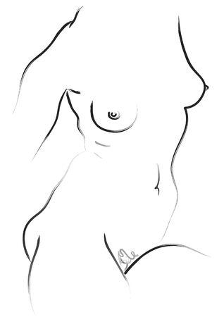 artistic nude: nude - torso - vector Illustration