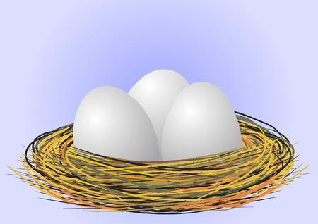 Eggs in the nest - vector Vector Illustration